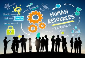 Choosing A Reliable Human Resource Management Software (HRMS)